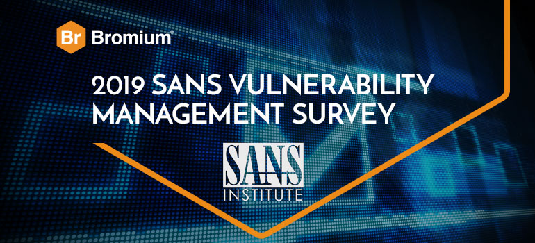 SANS Vulnerability Management Survey